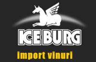 Import Vinuri